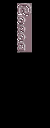 シフォンケーキ:ココア