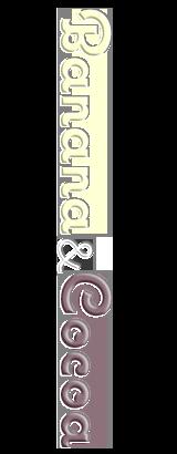 シフォンケーキ:ココア&プレーン(ツートン)